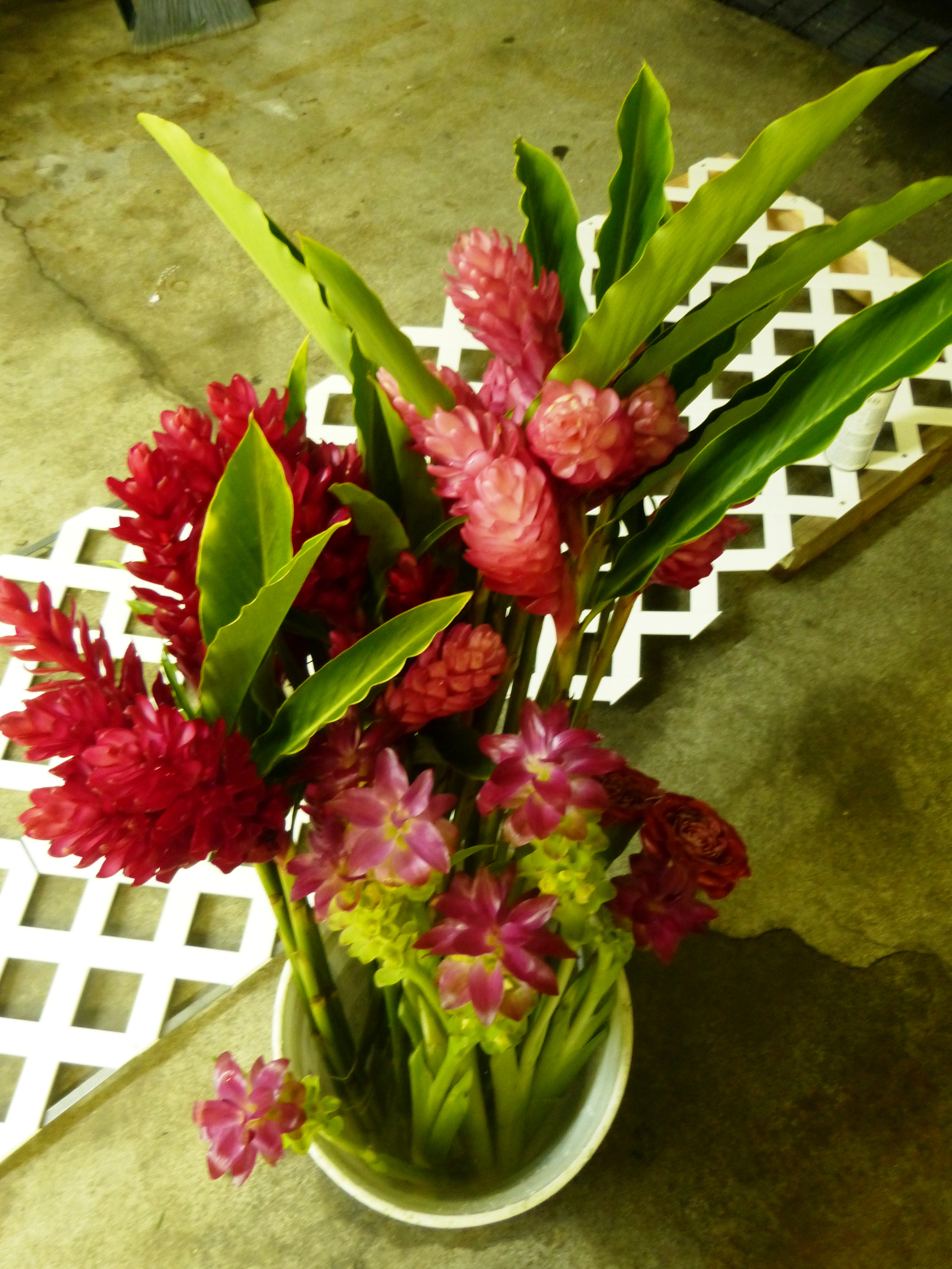 anthurium | Puna Kamali\'i Flowers